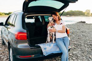 transportbur til din hund
